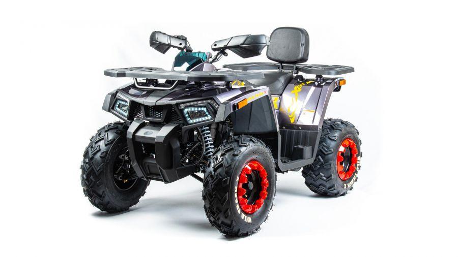 Детский квадроцикл бензиновый Motoland Wild Truck X