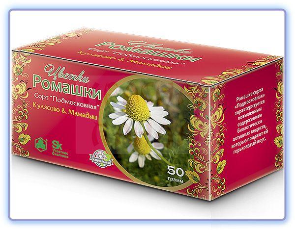 Цветки ромашки сорт Подмосковная Кулясово & Мамадыш