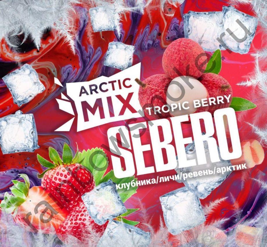 Sebero Arctic Mix 60 гр - Tropic Berry (Тропическая Ягода)