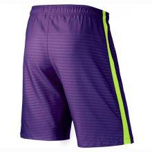 Шорты Nike Max Graphic фиолетовые