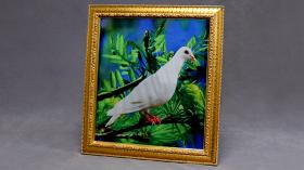 Картина для голубя Dove Frame (Photo) by Mr. Magic