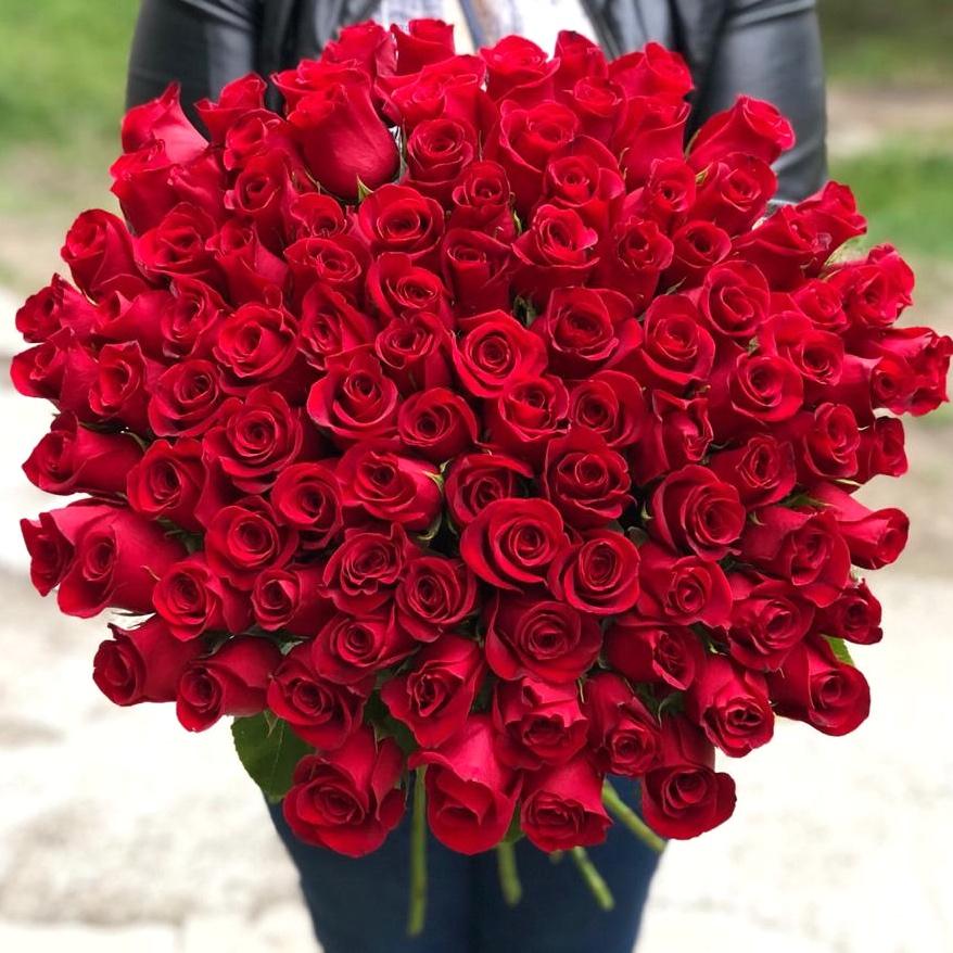 101 красная роза Кения 60 см