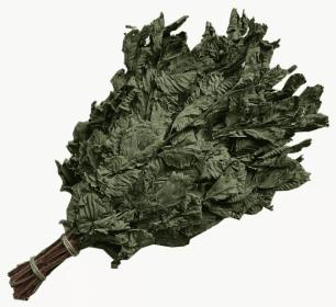 Веник из орешника