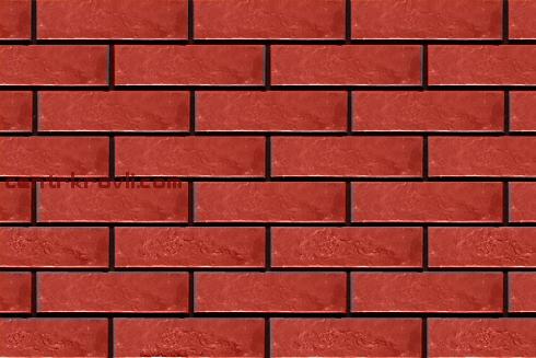 08. Rot rustik