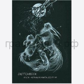 Блокнот А4 20л.нелин.Феникс+ Sketchbook черная бумага 120г/м2 2823