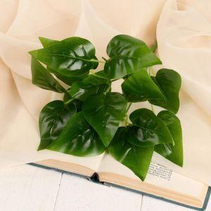 """Букет """"Зелёный лист"""" 32 см   5202931"""