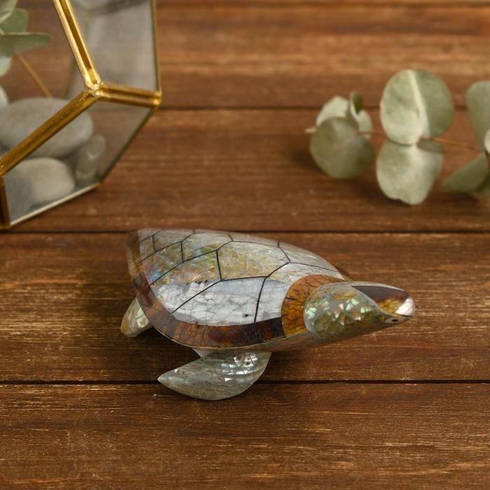 """Сувенир из ракушки """"Зелёная черепашка"""" 14х10х5 см    5013899"""