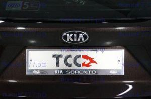 Рамки номерного знака, ТСС, сталь с лого