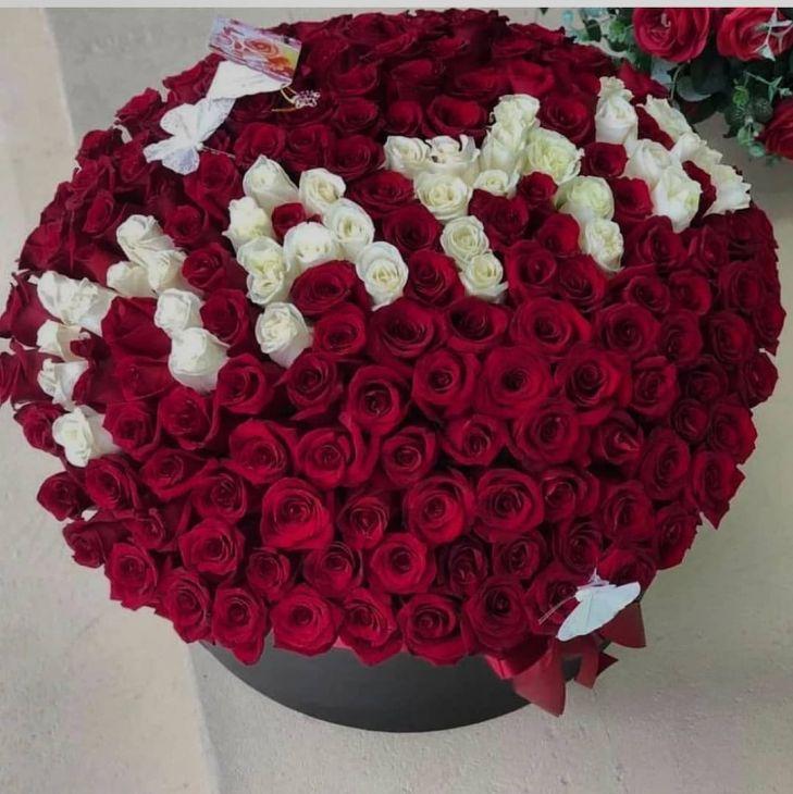 151 роза Маме