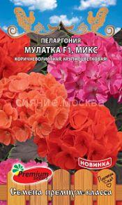 Пеларгония крупноцветковая Мулатка F1, микс (Премиум Сидс)