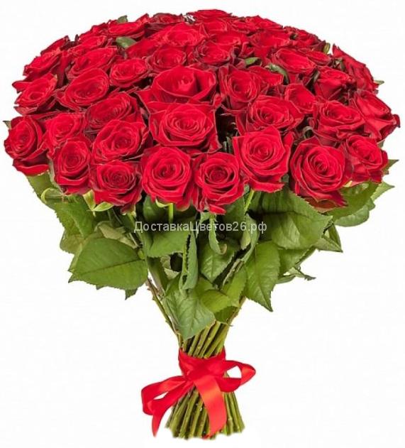 Букет из красных роз (Россия 50-70 см)