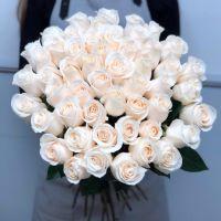 51 белая роза Эквадор 50 см