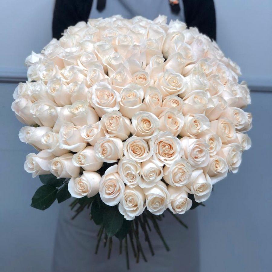 101 белая роза Эквадор 50 см