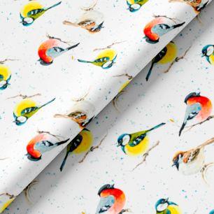 Хлопок Сатин - Зимние птички 50х37