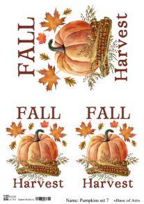 Pumpkins set 7