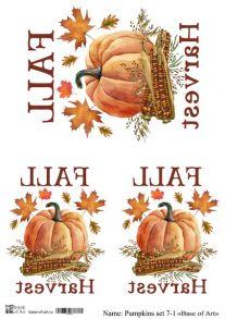 Pumpkins set 7-1