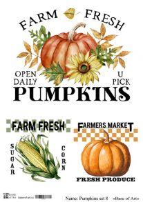 Pumpkins set 8