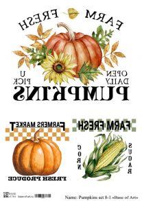 Pumpkins set 8-1