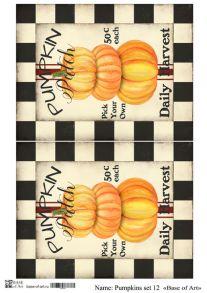 Pumpkins set 12