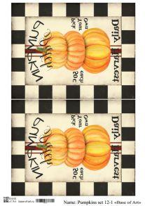 Pumpkins set 12-1