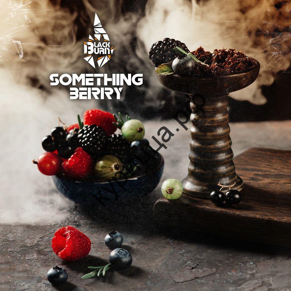 Black Burn Something Berry (Черный Берн Что-то Ягодное) 1 гр