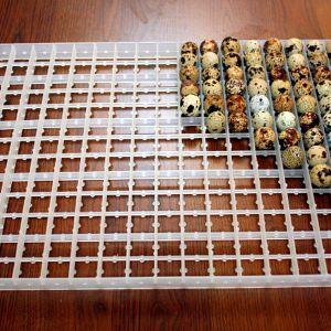 Лоток для перепелиных яиц 221