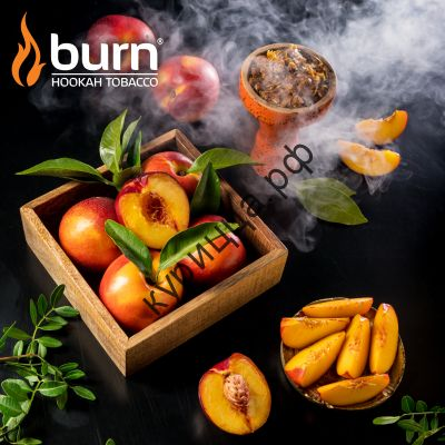 Burn Nectarin (Берн Нектарин)1 гр.