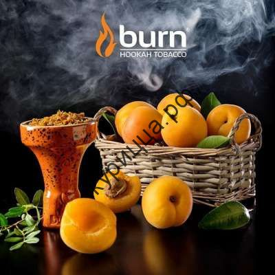 Burn Juicy Apricot (Берн Сочный Абрикос)1 гр.