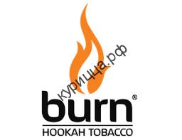 Burn Juicy Wildberry (Берн Сочная Земляника)1 гр.