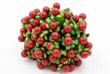 """Срез ягодки """" Буся""""  4518"""