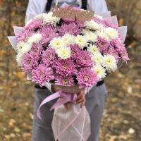 15 бело-розовых хризантем в красивой упаковке