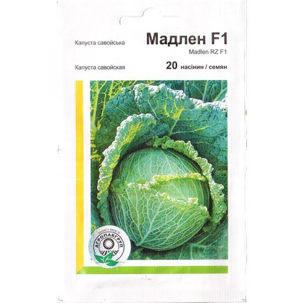 «Мадлен» F1 (20 семян) от Rijk Zwaan, Украина