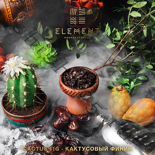 Element (40gr) (ВОДА) - Cactus Fig (Кактусовый финик)