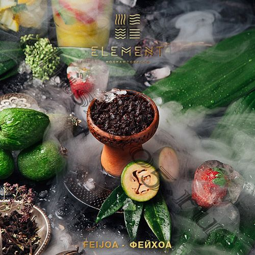 Element (40gr) (ВОДА) - Feijoa (Фейхоа)