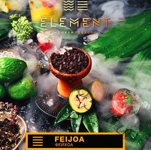 Element (40gr) (ЗЕМЛЯ) - Feijoa (Фейхоа)