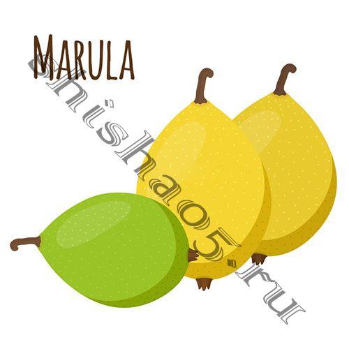 Element (40gr) (ВОЗДУХ) - Marula  (Африканский Экзотический Фрукт)