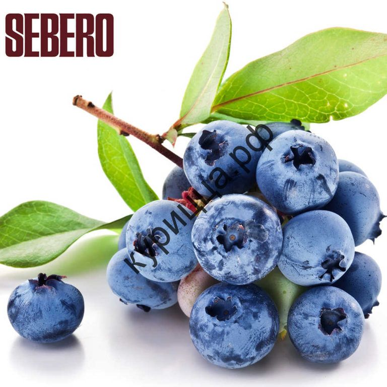 Табак Sebero – Blueberry (Себеро Черника)