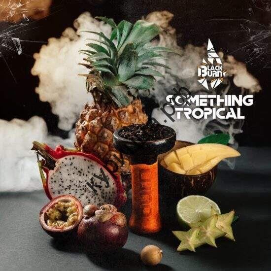 "Табак Burn BLACK 25 г ""Something Tropical"" (""Тропические фрукты"")"