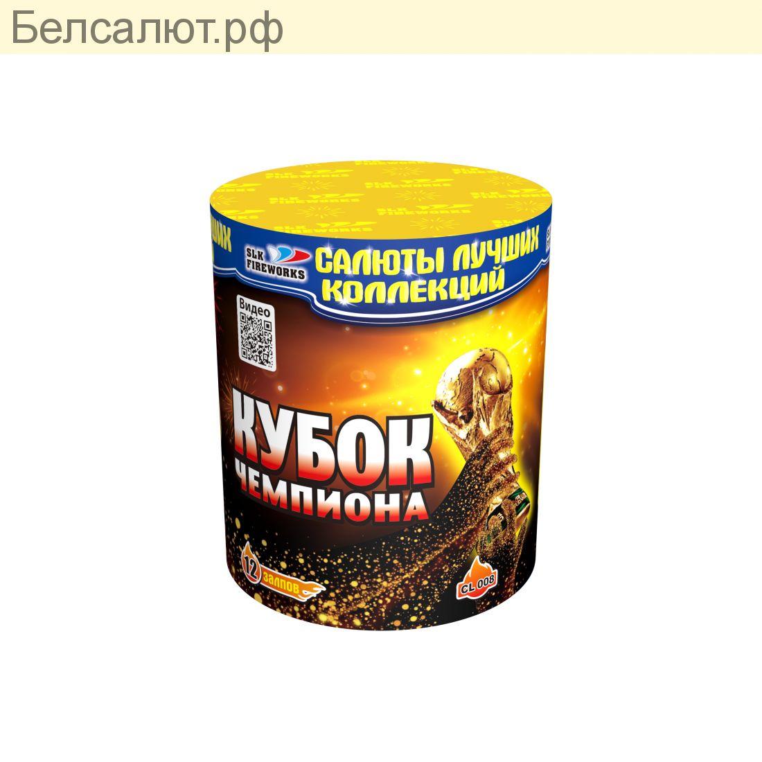 CL 008 КУБОК ЧЕМПИОНА