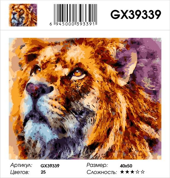 Картина по номерам на холсте GX39339