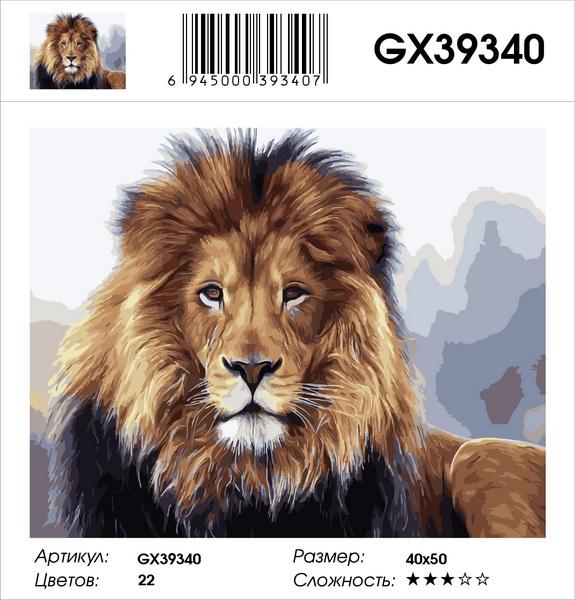 Картина по номерам на подрамнике GX39340