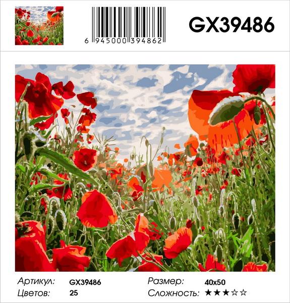 Картина по номерам на подрамнике GX39486