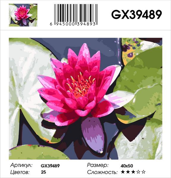 Картина по номерам на подрамнике GX39489