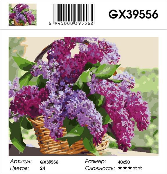Картина по номерам на подрамнике GX39556