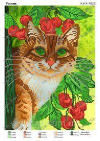 ЮМА ЮМА-4522 Рыжик схема для вышивки бисером купить оптом в магазине Золотая Игла - вышивка бисером