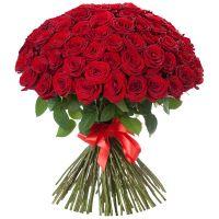 Красные розы от 11 штук