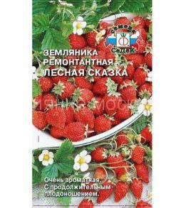 Земляника Ремонтантная Лесная Сказка (СеДеК)