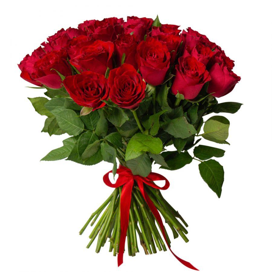 25 красных роз 50см (Кения)