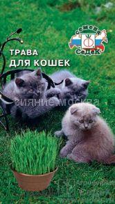 Трава для кошек (Седек)