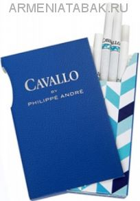 (313)Cavallo By Philippe Andre (Duty free)